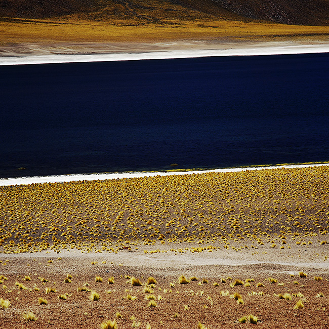 The Miscanti Lake is located in the Atacama Desert in northern Chile.