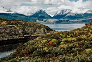 In Argentina, the H island is located off Ushuaia in the Beagle Channel.