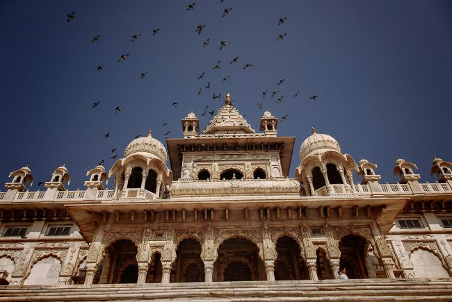Birds fly over the Jaswant Thada palace of Jodhpur in Rajasthan.