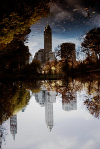 Buildings reflect in Central Park Lake.