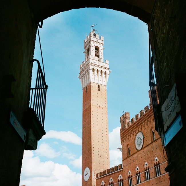 The Siena's Torre del Mangia
