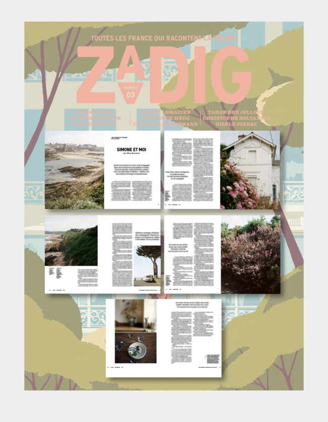publication zadig guillaume nedellec